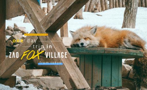 """แผนเที่ยว """"หมู่บ้านสุนัขจิ้งจอก"""" แบบ ONE DAY TRIP จากโตเกียว / One day trip in Zao fox village"""