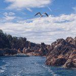 Sado Island-bg slider