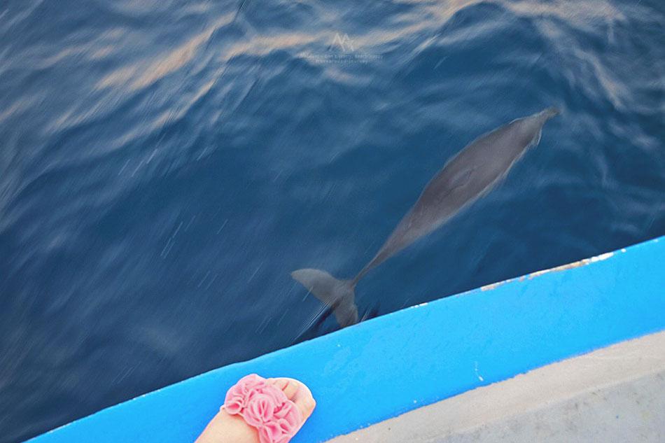 maldives-Veligandu-Island-Resort16