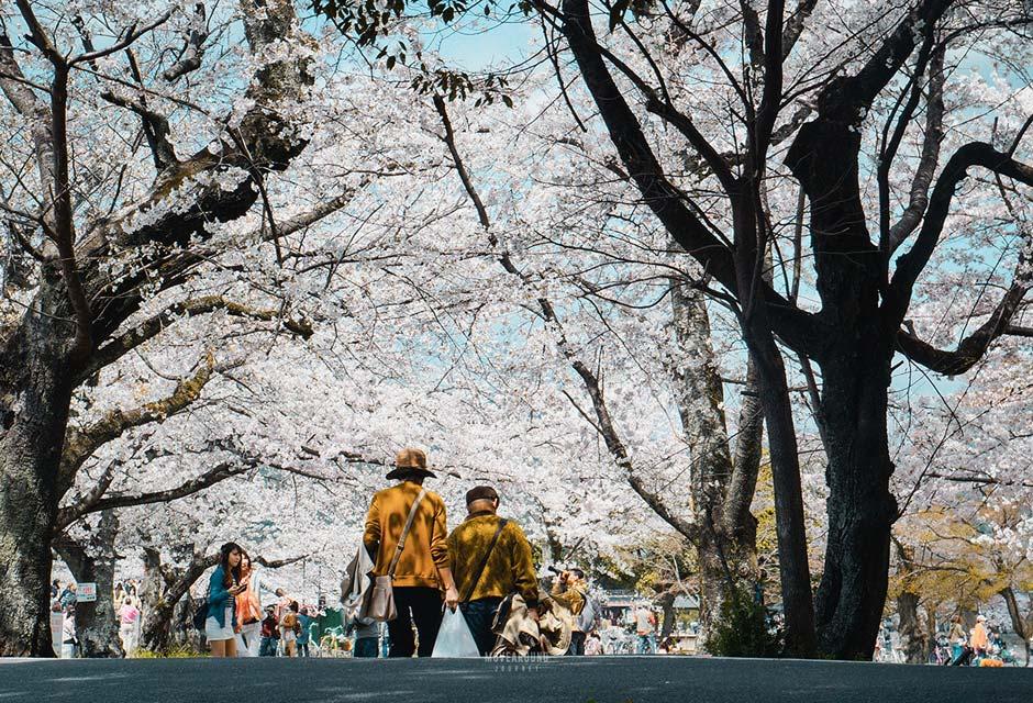 Plan-Kyoto-resize5