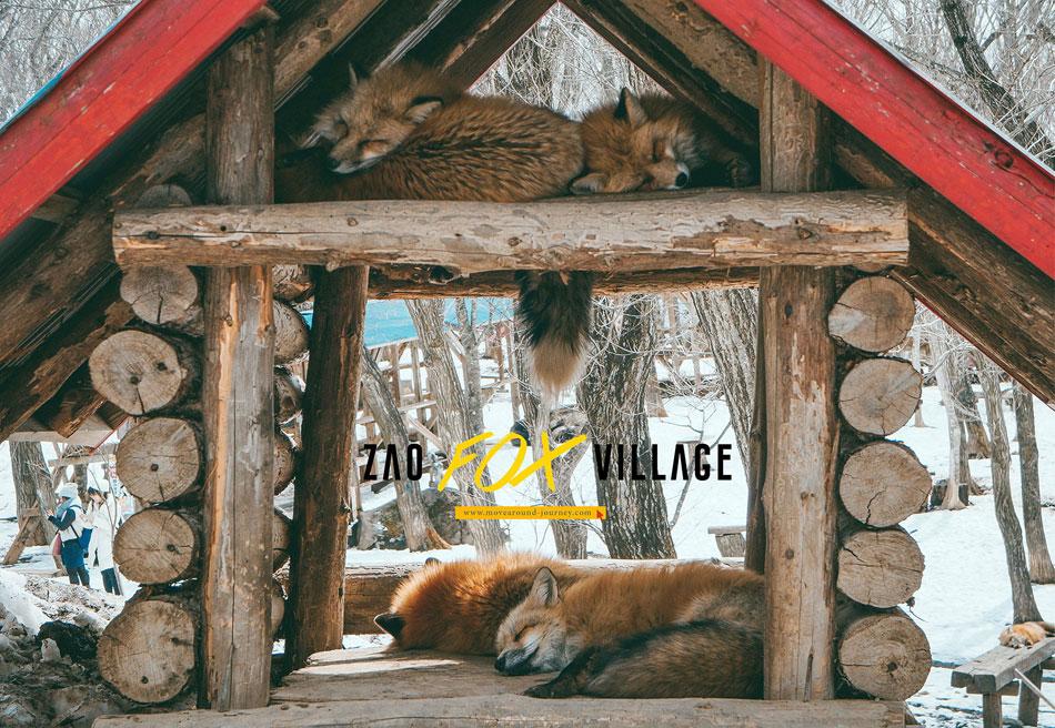 Plan-fox-village-resize