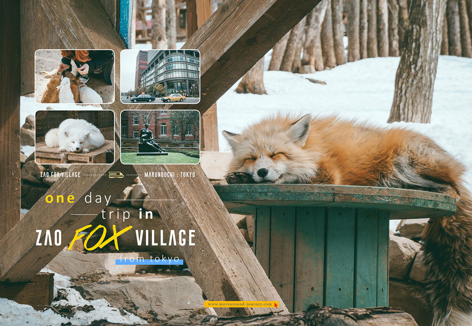 Plan-fox-village-resize2