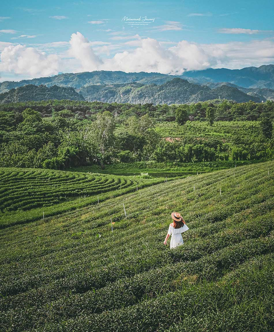 เชียงราย Chiang Rai
